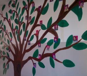 Pema Tree